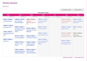 Rochester Internation Dance Weekly Class Schedule Screenshot
