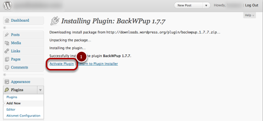 Activate_Plugin.png
