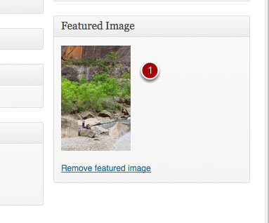 Add a Featured Image - c