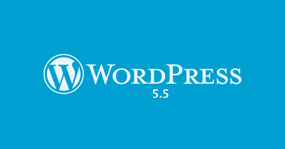 Auto-updates with WordPress 5.5